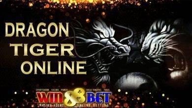 как-играть-в-dragon-tiger-с-определенно-большим-джекпотом-в-казино-sbobet